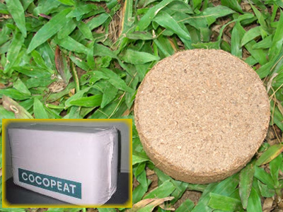 Coir Pith, Coco Peat Manufacturer Sri Lanka
