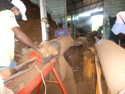 Coir Log, Coir Roll Manufacturer Sri Lanka